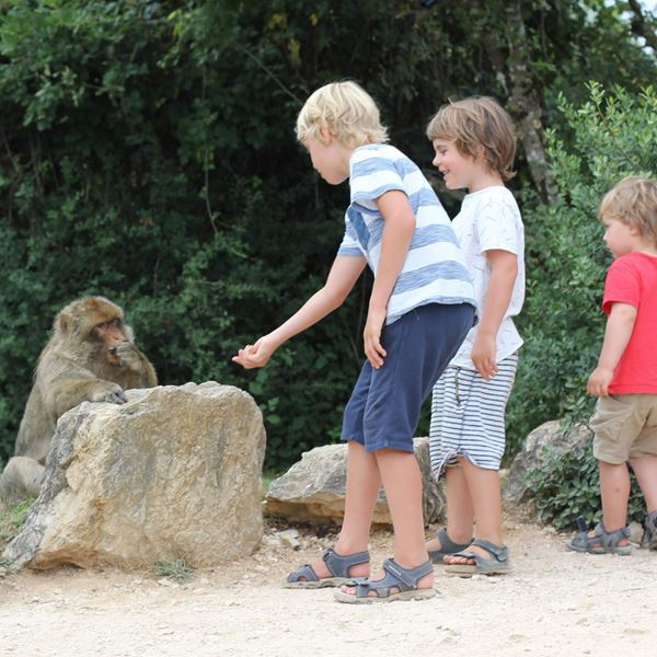 vacances-activite-enfants-primaire-05