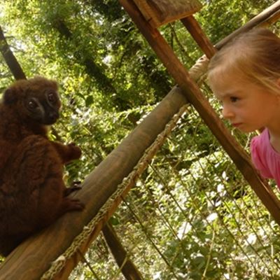 Le reserve zoologique calviac